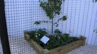#687 Chelsea Flower Show 2012 - Der Obstkäfig