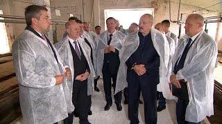 Лукашенко призывает не забрасывать старые фермы наряду со строительством новых