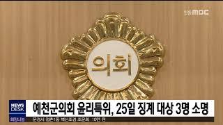예천군의회 윤리특위 일정, 징계 조건