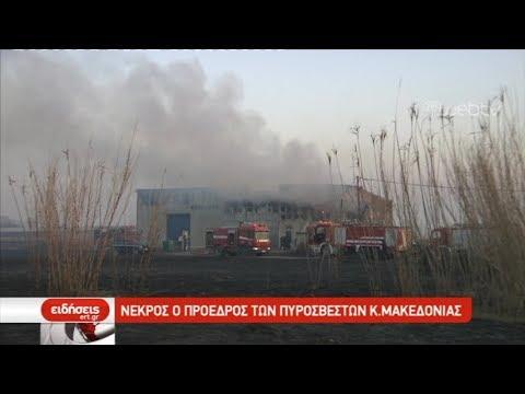 Νεκρός ο πρόεδρος των πυροσβεστών Κ. Μακεδονίας  | 02/03/19 | ΕΡΤ