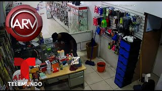 Captado en video, robo en tienda de celulares | Al Rojo Vivo