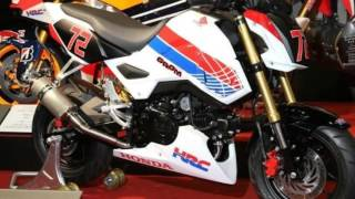 8. 2017 Honda Grom / MSX 125 HRC Race Prepped Motorcycle Pictures | MSX125SF