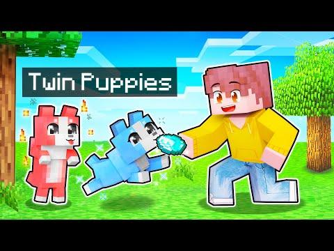My HELPFUL Twin Wolf PUPPIES In Minecraft!