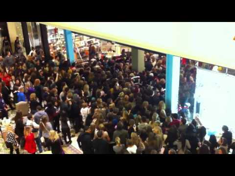 crowd - The insane crowd for the black friday midnight opening of Urban Outfitters in the Thousand Oaks Mall in California. From November 25, 2011. They trampled the...