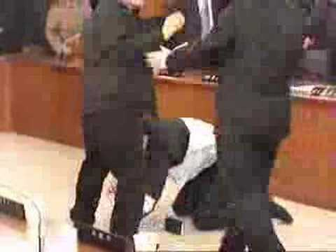 Politician Fight - Judo master