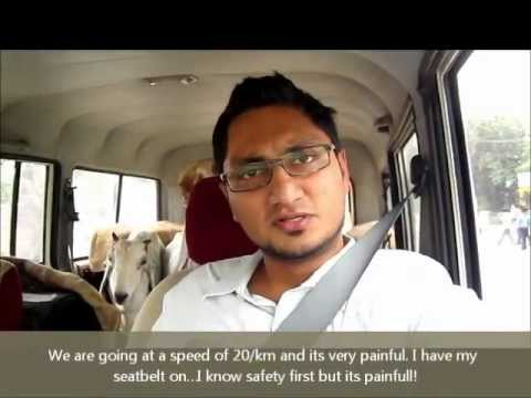 rajasthan goat farming - Here is me (Akbar K Qureshi) travelling 1200Km and 18 hours non-stop with goats in my car- From Indore to Fatehpur, Rajasthan. See how I've removed the seats...