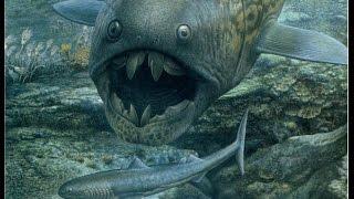 Video The Evolution of Fish MP3, 3GP, MP4, WEBM, AVI, FLV Mei 2018