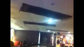 Persian Carpet Vine Video