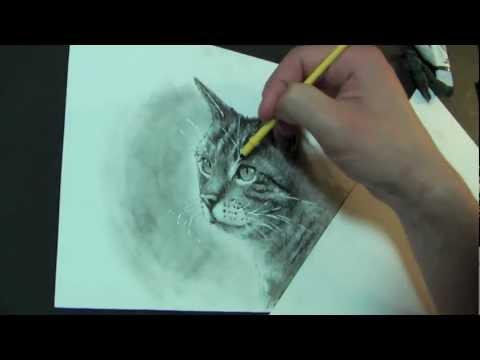 KATZE zeichnen lernen ! YEAH die 1. Freitags Lektion