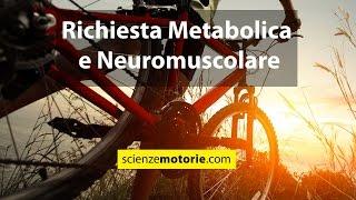 Richiesta Metabolica e Neuromuscolare nel Ciclismo