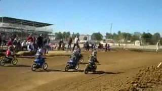 9. Big PW50 and JR50 race at starwest yamaha pw50 Suzuki jr50