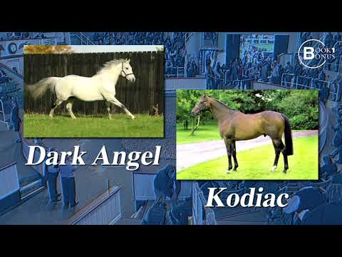 Tattersalls October Yearling Sale Book 1 Catalogue Preview 2017