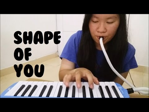 Shape Of You - Ed Sheeran | Cindy Felicia | Melodica Cover Mp3