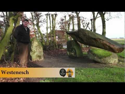 Hunebed  D44 Westenesch
