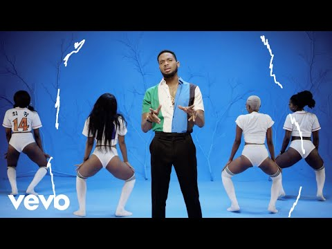 VIDEO: D'Banj - Shoulda mp4