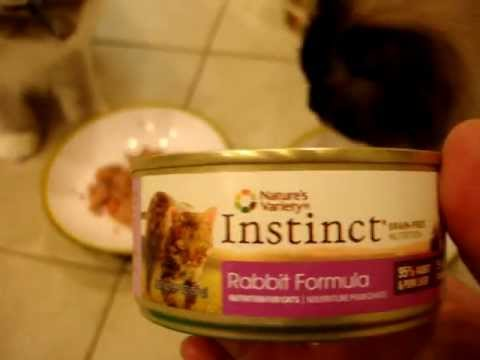 Nature's Variety Instinct Canned Cat Food Product Reviews – ねこ – ラグドール – Floppycats