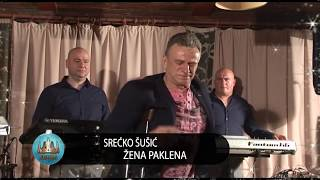 Srecko Susic - Zena Paklena (Live)