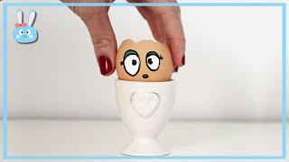 L'œuf lentilles