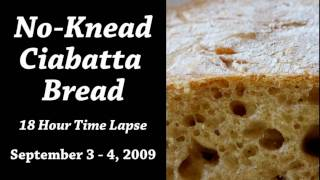 18 Hour Time Lapse of Ciabatta Bread Dough Rise with Recipe