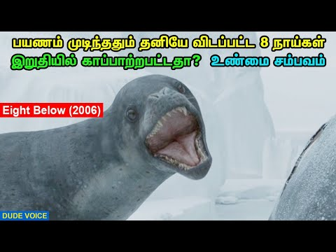 Eight Below(2006) - Dude Voice - Story Explained in Tamil