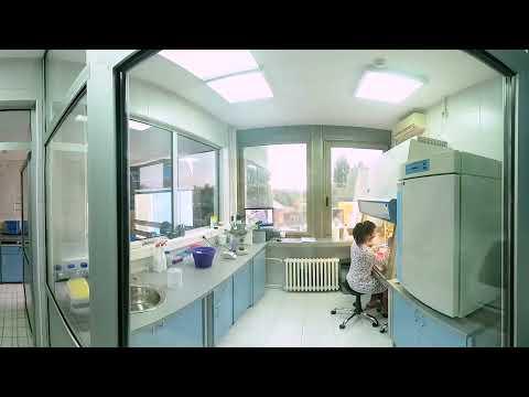 Лабораторија за ћелијске културе