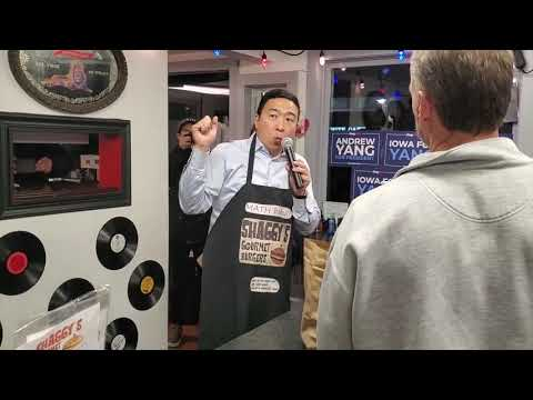 Andrew Yang Will Punish Corporate Welfare