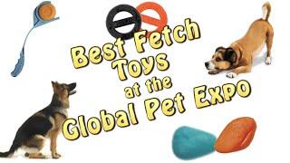 Best Fetch Dog Toys