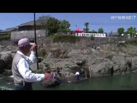 闘竜灘でアユ漁解禁 加東