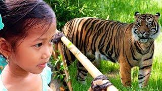 Download Video Ke Kebun Binatang | Belajar Mengenal Nama Hewan Gajah Harimau Singa Jerapah Rusa Kuda Nill Buaya MP3 3GP MP4