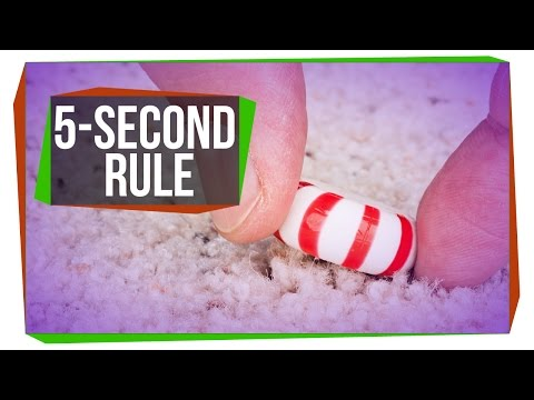 Is the Five-Second Rule Real? (видео)