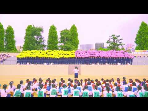 2018年度体育大会 中学校 応援合戦