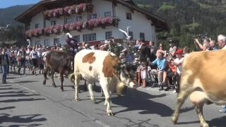 Fugen Austria  City pictures : Journey Day 1: Zillertal Austria (Fügen)