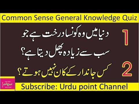General Knowledge Quiz  Common Sense IQ Test  Paheliyan in Urdu With Answer  Urdupoint