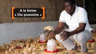Yombi OUÉDRAOGO, 39 ans, est juriste. Il s'est lancé dans l'aviculture en 2011 avec 10 poussins. Aujourd'hui, sa ferme compte 3000 têtes. L'élevage est une ...