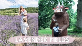 LAVENDER FIELDS, FLORAL DRESSES & GRUFFALO HUNTING  VLOGDRESSES MENTIONED:http://bit.ly/2tUiKnr (playsuit)http://bit.ly/2tUsw9nhttp://bit.ly/2tEdkBWhttp://bit.ly/2tUOSY9http://bit.ly/2tUavrJhttp://bit.ly/2tUwrmEhttp://bit.ly/2tE6axECLICK TO SUBSCRIBE :) http://www.youtube.com/dollybowbowWHERE ELSE TO FIND ME!SNAPCHAT: kate.murnaneSHOP: http://www.dollybowbow.co.ukBLOG: http://www.dollybowbow.blogspot.co.ukTWITTER: http://www.twitter.com/dollybowbowINSTAGRAM: http://instagram.com/katebowbowFACEBOOK: http://www.facebook.com/dollybowbowRIK'S TWITTER: http://www.twitter.com/rikp89RIK'S INSTAGRAM: http://instagram.com/rikp89