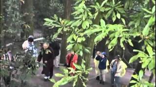 Chuyến Hành Hương Tứ Đại Danh Sơn Phật Giáo Trung Quốc - Tập 2