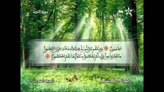 Recitation of the Sheikh Rachid belasheyyah تلاوة مميزة للمقرئ رشيد بلعشية الحزب 20