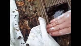 Repairing Rotten Deck Upstands
