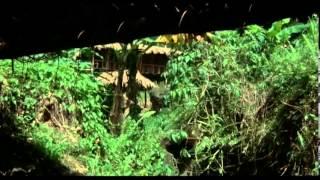 Video Portés Disparus 2: Pourquoi ? - [Film] - 1985 MP3, 3GP, MP4, WEBM, AVI, FLV September 2018