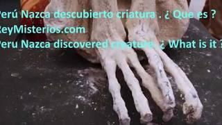Encontrado una extraña momia descubierta en una exploración internacional ,en una cueva cerca de la famosa líneas de nazca restos de un extraterrestre ? Ver la Noticias http://www.reymisterios.com/videos/ovnis/ovnisPeru/Meseta-de-Nazca-criatura-de-tres-dedos-l1528.html
