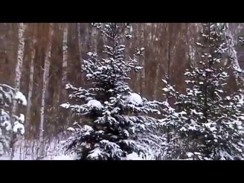 Видео.  Красота Сибири.  Природа.