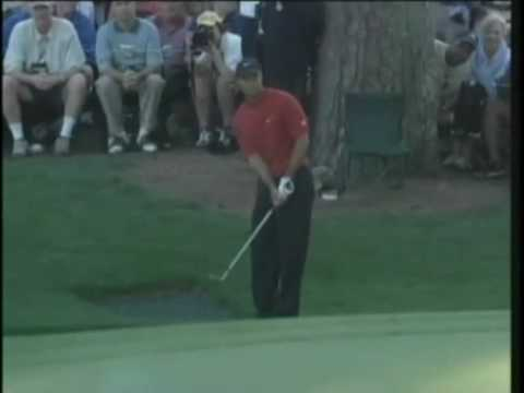 Tiger Woods phenomenal chip in at the 2005 Masters