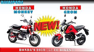 2. 2019 Honda Grom VS 2019 Honda Monkey ll Honda's Upcoming 125cc Bikes