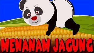 Download Video Menanam Jagung| Lagu Anak-Anak Indonesia Terpopuler | Kumpulan | Lagu Anak TV MP3 3GP MP4
