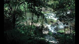 Muang Pakxong Laos  city images : Waterfall resort paksong(Laos)