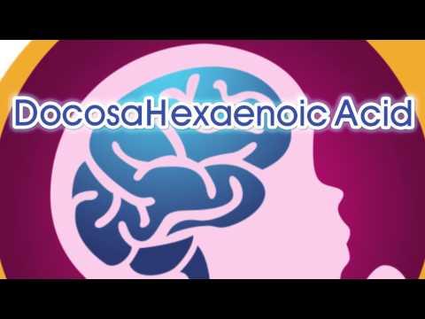 Brain Development Inside the Womb