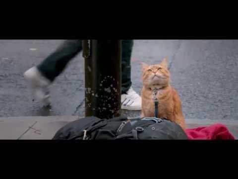 Трейлер Уличный кот по кличке Боб / A Street Cat Named Bob
