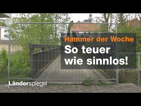 Reinfeld: Teure Brücke ins Nirgendwo - Hammer der Woche vom 04.05.2019 | ZDF