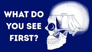 Video 11 Optical Illusions That'll Reveal Your Personality Type MP3, 3GP, MP4, WEBM, AVI, FLV Agustus 2019