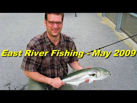 NYC?? Urban Angler East River Fishing – Spring 2009